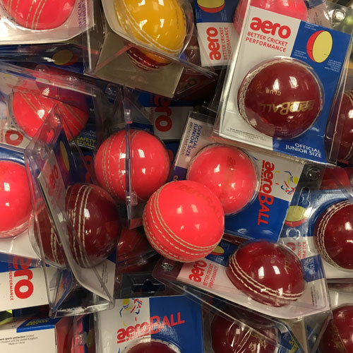 Teddington Sports Cricket BAlls